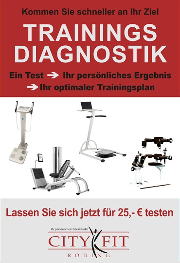 Trainingsdiagnostik